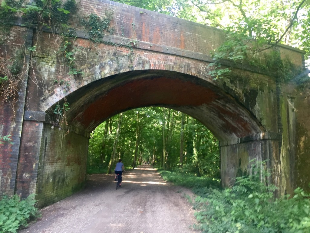 Running From Wickham to Soberton on the Meon Valley Trail