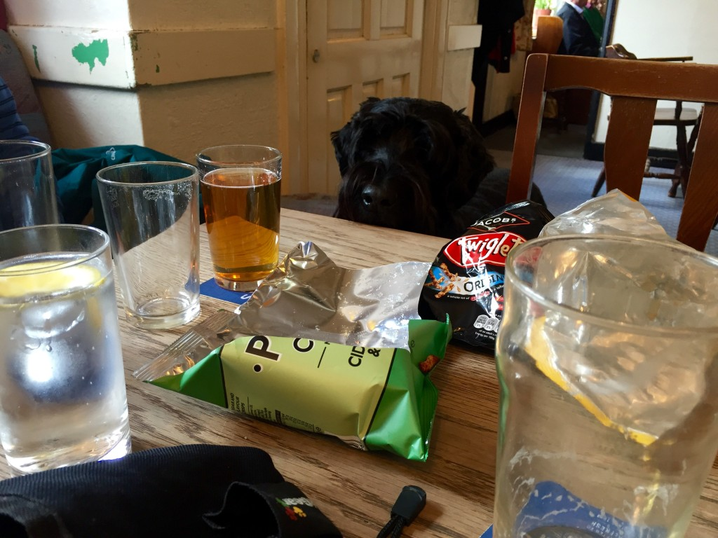 Dog-friendly pubs, bars, cafes and restaurants in Southampton