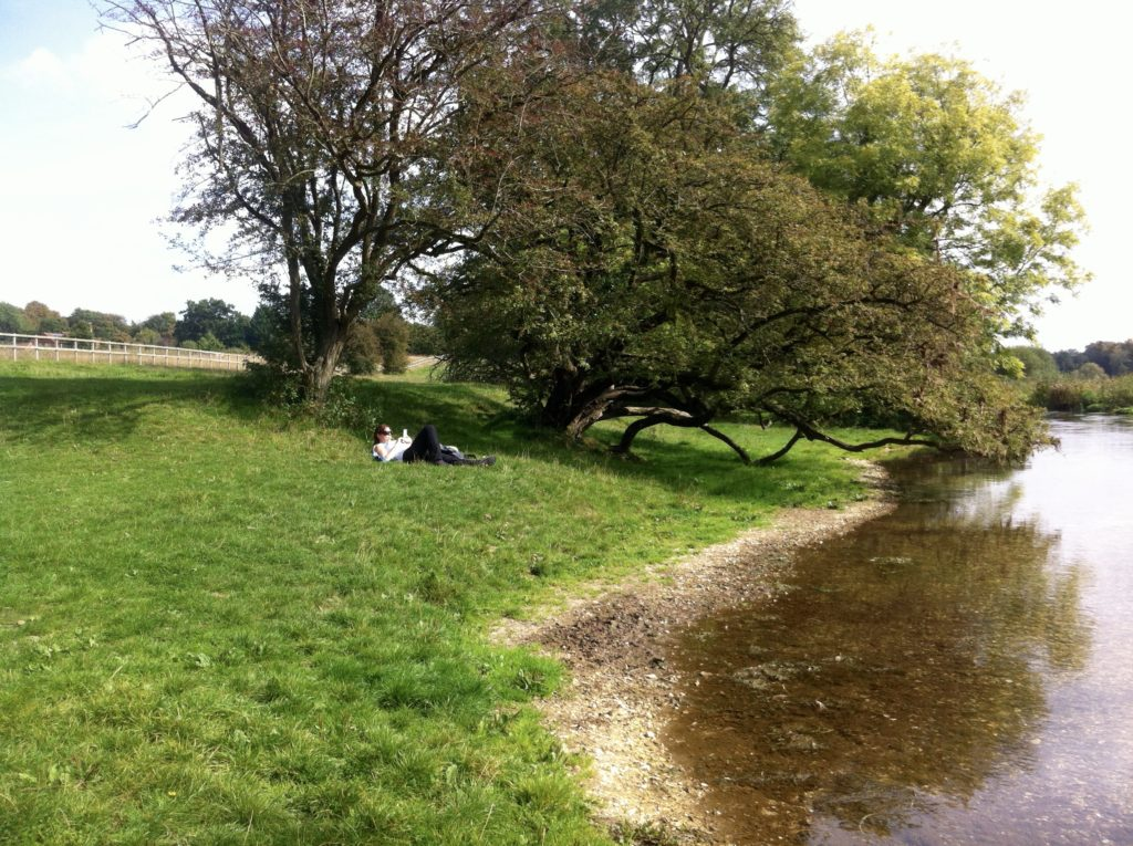 By the river in Itchen Abbas